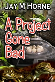 A Project Gone Bad ebook by Jay M Horne