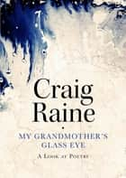 My Grandmother's Glass Eye - A Look at Poetry ebook by Craig Raine