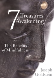 7 Treasures of Awakening - The Benefits of Mindfulness ebook by Joseph Goldstein