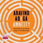 Amnesty audiobook by