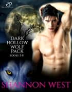 Dark Hollow Wolf Pack, Vol 2 ebook by Shannon West