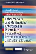 Labor Markets and Multinational Enterprises in Puerto Rico ebook by Ahmad H. Juma'h,Doris Morales,Antonio Lloréns-Rivera