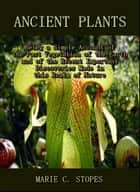 Ancient Plants : Being a Simple Account of the Past Vegetation of the Earth and of the Recent Important Discoveries Made in this Realm of Nature ebook by Marie C. Stopes