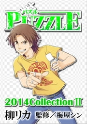 PUZZLE2014collectionII ebook by 柳リカ,梅屋シン