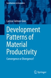 Development Patterns of Material Productivity - Convergence or Divergence? ebook by Larissa Talmon-Gros