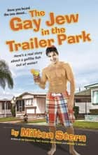 The Gay Jew in the Trailer Park ebook by Milton Stern