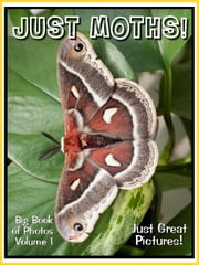 Just Moth Photos! Big Book of Photographs & Pictures of Moths, Vol. 1 ebook by Big Book of Photos