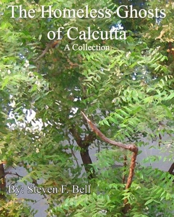 The Homeless Ghosts of Calcutta, A Collection. ebook by S. Fulton Bell