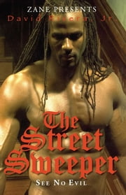 The Street Sweeper - See No Evil ebook by David Rivera Jr.