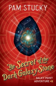 The Secret of the Dark Galaxy Stone ebook by Pam Stucky