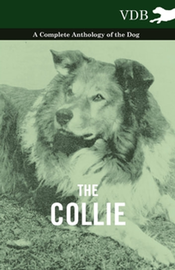 Pyrenean Dogs - A Complete Anthology of the Dog