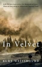 In Velvet ebook by Burt Weissbourd