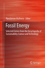 Fossil Energy - Selected Entries from the Encyclopedia of Sustainability Science and Technology ebook by Ripudaman Malhotra