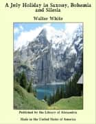 A July Holiday in Saxony, Bohemia and Silesia ebook by Walter White