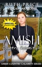 An Amish Country Calamity 2 - Lancaster County Yule Goat Calamity, #3 ebook by Ruth Price