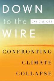 Down to the Wire: Confronting Climate Collapse ebook by David W. Orr