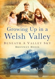 Growing Up In A Welsh Valley - Beneath a Valley Sky ebook by Bronwen Hosie