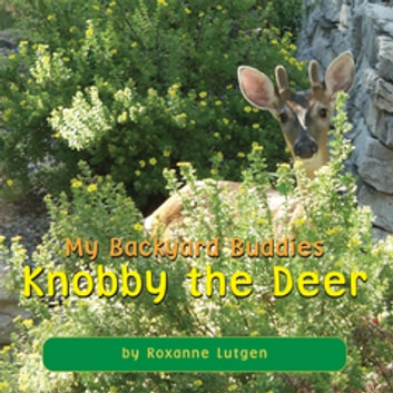 Backyard Buddies my backyard buddies ebookroxanne lutgen - 9781477177426