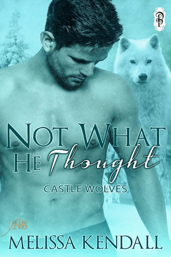 Not What He Thought (1Night Stand) ebook by Melissa Kendall