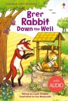 Brer Rabbit Down the Well: Usborne First Reading: Level Two ebook by Louie Stowell, Eva Muszynski
