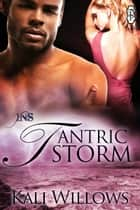 Tantric Storm ebook by Kali Willlows