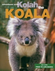 Kolah the Koala ebook by Jan Latta