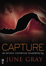 Capture (Disarm #6) ebook by June Gray