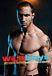 Wild Boys - Gay Erotic Fiction ebook by