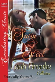 Satin and Steel ebook by Leah Brooke