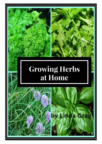Growing Herbs at Home - Herbs at Home ebook by Linda Gray