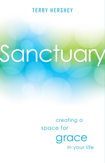 Sanctuary - Creating a Space for Grace in Your Life ebook by Mr. Terry Hershey