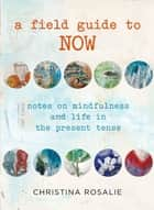 Field Guide to Now ebook by Christina Rosalie