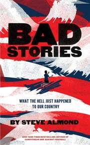 Bad Stories - What the Hell Just Happened to Our Country ebook by Steve Almond