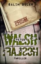 Peter Walsh :FALSCH - Teil 2 - Thriller ebook by Salim Güler