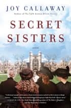 Secret Sisters - A Novel ebook by Joy Callaway