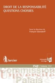 Droit de la responsabilité - Questions choisies ebook by François Glansdorff