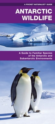 Antarctic Wildlife - A Folding Pocket Guide to Familiar Species of the Antarctic and Subantarctic Environments ebook by James Kavanagh,Raymond Leung