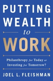Putting Wealth to Work - Philanthropy for Today or Investing for Tomorrow? ebook by Joel L. Fleishman