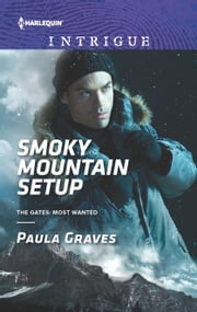 Smoky Mountain Setup - A Thrilling FBI Romance ebook by Paula Graves