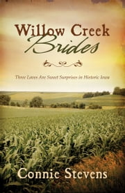 Willow Creek Brides - Three Loves Are Sweet Surprises in Historic Iowa ebook by Connie Stevens