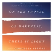 On the Shores of Darkness, There Is Light - A Novel audiobook by Cordelia Strube