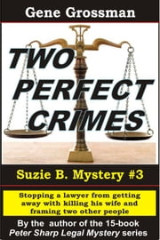 Two Perfect Crimes: Suzi B. Mystery #3 ebook by Gene Grossman