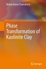 Phase Transformation of Kaolinite Clay ebook by Akshoy Kumar Chakraborty