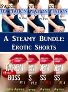 A Steamy Bundle: Erotic Shorts ebook by Katie Ayres