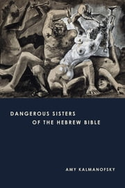 Dangerous Sisters of the Hebrew Bible ebook by Amy Kalmanofsky