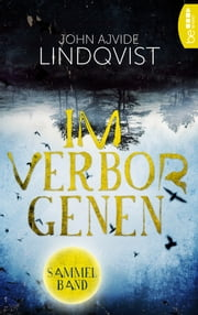 Im Verborgenen ebook by John Ajvide Lindqvist