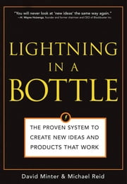 Lightning in a Bottle: The Proven System to Create New Ideas and Products That Work ebook by David Minter,Michael ReidDavid Minter,Michael ReidDavid Minter,Michael Reid