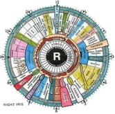 An Informative Guide About Iridology ebook by Edward Lyle