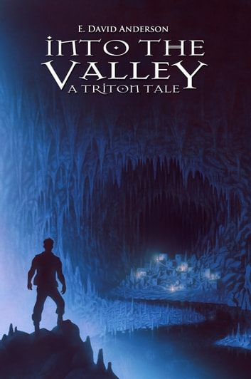 Into the Valley ebook by E. David Anderson