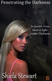 Penetrating the Darkness ebook by Shiela Stewart